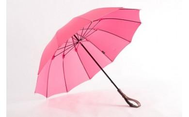 006 ヌレンザ 雨傘(つつじ)