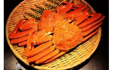 【B0103】小樽を味わう ずわい蟹姿