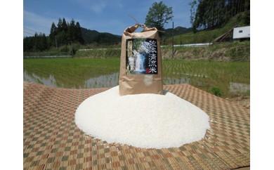 B002 佐本川の清流で育てた「佐本清流米(コシヒカリ)」5kg