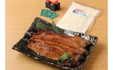 備長炭で焼きあげた鰻と肝、プレミアム米「龍の瞳」のセット