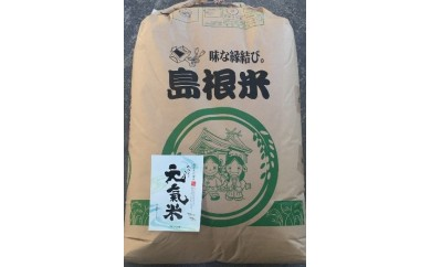 C-157 高津川の恵み 特別栽培米 ヘルシー元氣米玄米30kg【3pt】