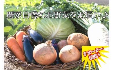 ve001 新鮮!シャキシャキ!旬の野菜詰め合わせ(1回発送)