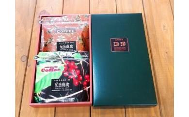 A-16 焙煎師が選んだオススメコーヒー2選【1pt】