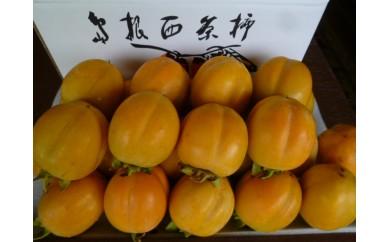 B-10 観光農園スカイファーム特選大玉西条柿5kg【2pt】