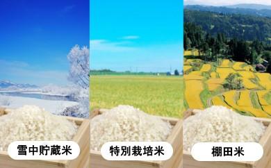 【C2910】魚沼産コシヒカリ 春の食べ比べセット