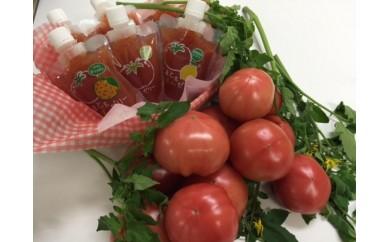 【A-46】鳥取県産「笑心とまと」&とまとゼリー、中玉トマト詰め合わせ(期間限定)