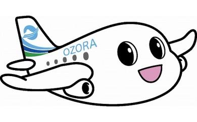 羽田空港 → 女満別空港  (往復航空券)