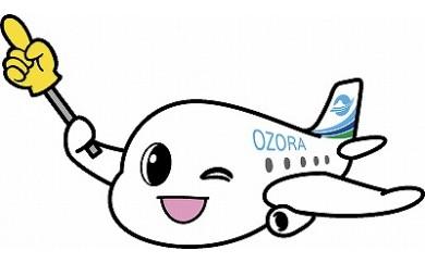 中部国際空港 → 女満別空港(往復航空券)