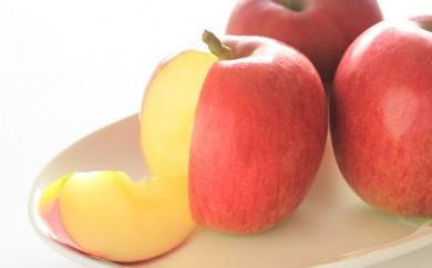 [№5854-0129]りんご シナノスイート 約5kg