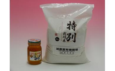 81 藤観光 お米+美唄産百花蜜セット(平成29年産)