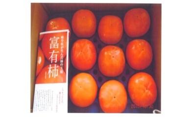 特産 「富有柿」12個