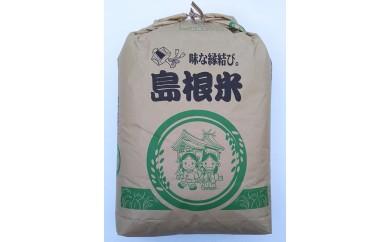 C-238 こしひかり玄米 30㎏【3pt】