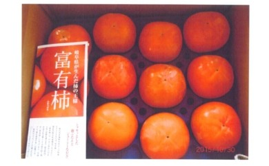 特産「富有柿」24個
