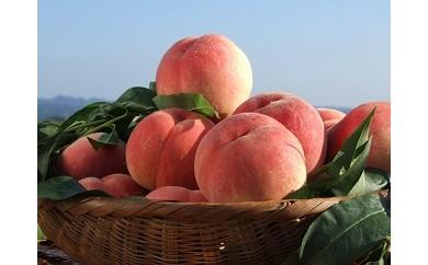 伊達市の桃フルコース