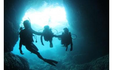 ボートで行く!青の洞窟ダイビング+熱帯魚に餌付け体験ダイビング