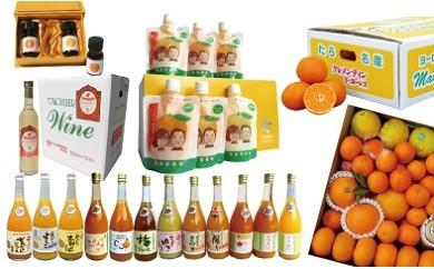 G-9 田島柑橘園ベストセレクション定期便コース