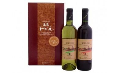 A-21島根ワイン