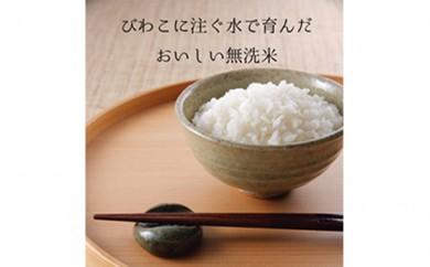 [№5899-0087]ふるさと応援特別米 こしひかり(BG無洗米)5kg×2