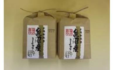 【D02】魚沼産コシヒカリ 塩沢地区産