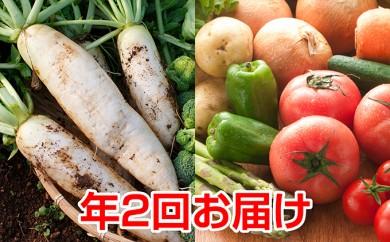 [№5751-0079]「ベジーズ館」の夏野菜と冬野菜の詰め合わせセット(2017頒布)