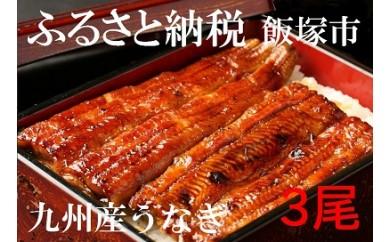 【B001】魚市場厳選 九州産うなぎ蒲焼(特大サイズ3尾)