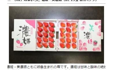 (62)岐阜いちご 濃姫・美濃娘(2L 15玉 各1パック)