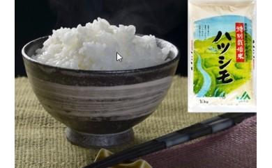 (65)岐阜県産特別栽培米ハツシモ(10kg)