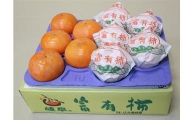 (60)富有柿(3L 10個)