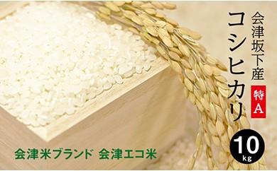 21-J 会津坂下町産 コシヒカリ10kg(29年度産米・会津エコ米)(白米)