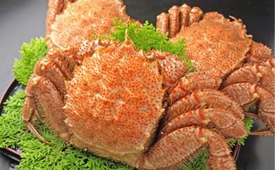 C01-012 ボイル毛ガニ 1kg