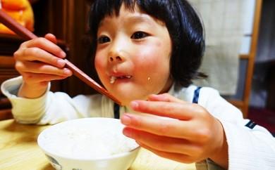 Sbb-01 【毎月お届け便】簡単だからお子様も喜んでお手伝いしてくれる!「仁井田米にこまる 無洗米」5㎏(全3回)