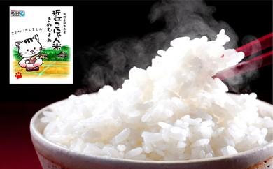 [№5748-0097]特別栽培米 近江こにゃん米きぬむすめ10kg