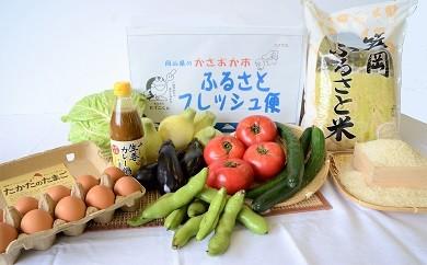 【JA120-1】ふるさとフレッシュ便(旬野菜・ふるさと米)12回コース