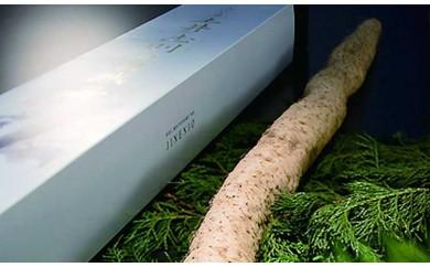29D-026 有機JAS認証取得 土井志則の自然薯【10,000pt】