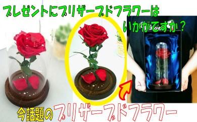 YB16.プレゼントにオススメ!プリザーブドフラワー
