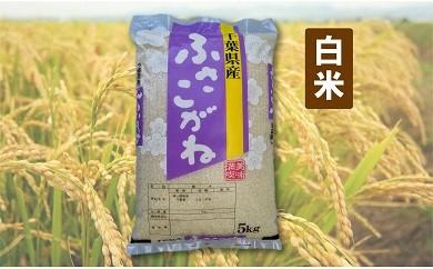 E01-001 長生産ふさこがね(白米20kg)平成30年産新米