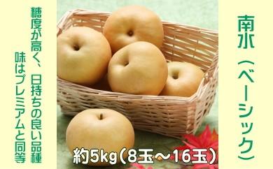 A-30 梨 南水(ベーシック)【約5kg】