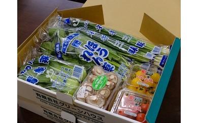 A-2 山陽小野田の野菜三昧(冬セット)