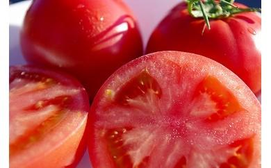 とにかく甘い!!KISSトマト(4箱)