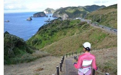 [Zb-01]南伊豆町ウルトラマラソン100kmの部参加プラン