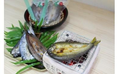 78 岐阜の川魚 干し物セット