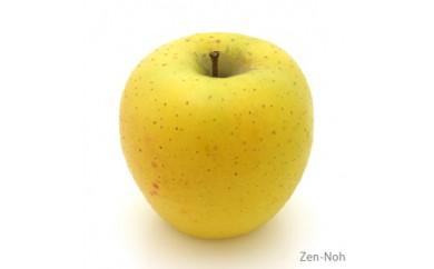 【ふるさと納税】季節のりんご『シナノゴールド』(5kg)(予約制)