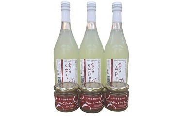 A70 交流都市 群馬県長野原町 記念品 リンゴジュースセット