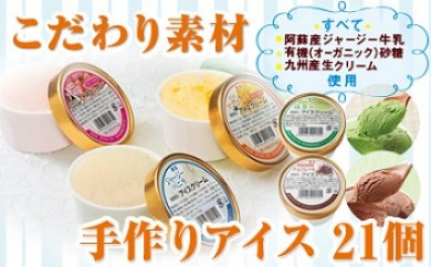 【A43031】手作り贅沢アイスクリーム5種21個