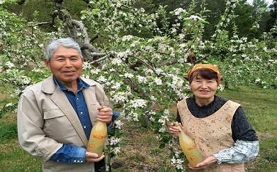 601*信州小川村成就地区限定 りんご贅沢盛りだくさん!リンゴもジュースも大満足!