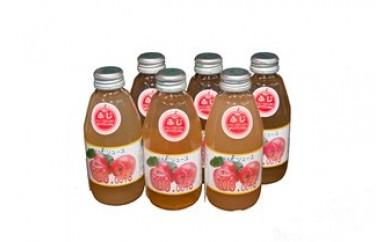 リンゴジュースセット