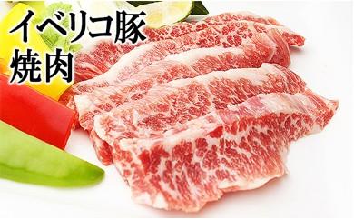 【25-06】イベリコ豚 極上焼肉 600g