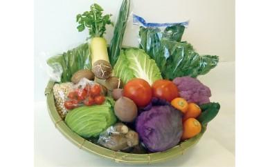 42.季節の野菜おまかせセット
