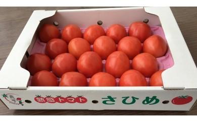 A-241 益田産 熟感トマト(20玉)【1pt】
