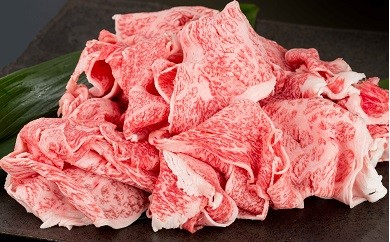 YG005 佐賀牛と九州産黒毛和牛セット 切落し1.6kg